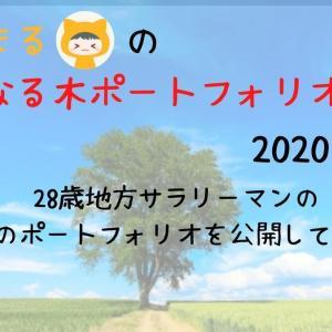 りーまるの金のなる木ポートフォリオ【2020年7月】~28歳地方サラリーマンの等身大記録~
