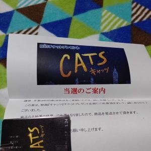 チケット(* ´ ▽ ` *)