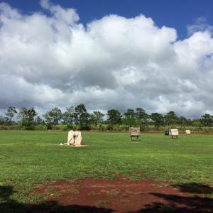 Waipio Archery Range と Outback Stakehouse
