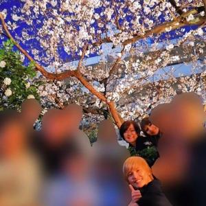 安倍昭恵夫人花見写真の場所はどこ!?桜の見えるレストランは!?