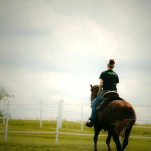 乗馬を趣味にするならまずは軽速歩から!軽速歩克服方法とコツとは!?