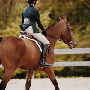 乗馬時の傾いたシート(座り)と体のねじれを改善する方法とは!? ~ヒントは階段を降りること~