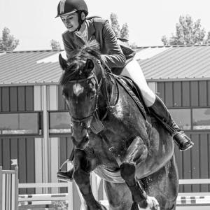 馬術・乗馬がいつまでもマイナースポーツである4つの理由とは? ~伝統的なオリンピック競技でもあるが~