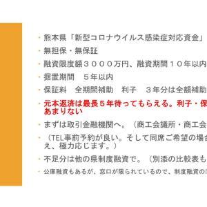 家賃支援給付金の報酬+Withコロナ期の資金不安をすっきりさせる・紙上説明会(3)