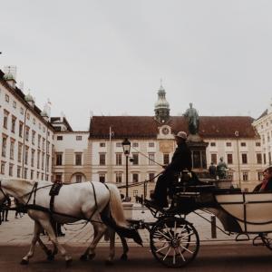 音楽も、美術も、歴史も。ウィーンにて Ⅰ