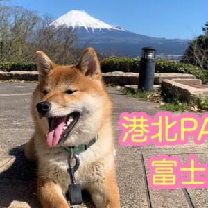 ドライブ港北PA〜富士川SA  ※撮影時期は、今週ではありません