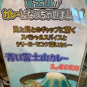 青いカレー  富士川SA  撮影時期は、今週ではありません