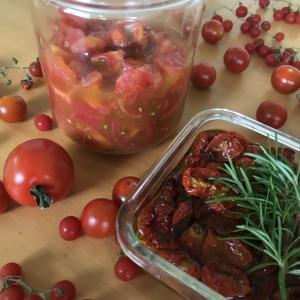 トマト大量消費 自家製調味料ドライトマトのオイル漬けと発酵トマト