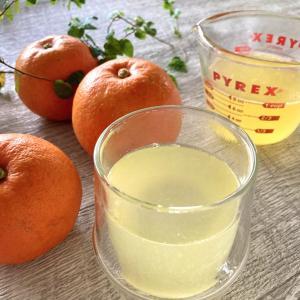 旬の食材を食べよう 疲労回復にはクエン酸 糖質オフ橙シロップ