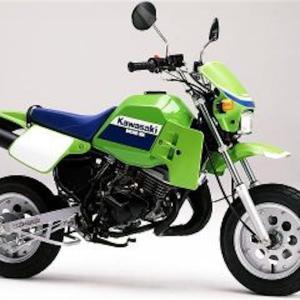 バイク屋の選ぶ気持ちの良いバイク  KS-2 KSR どんなバイク?