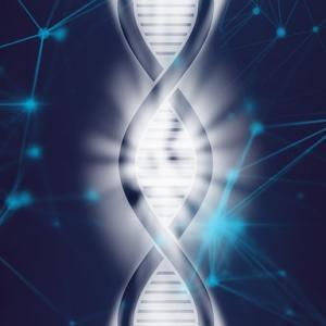 世界初!不妊の遺伝子判明!卵子・精子の形成を促す【マイオーシン】