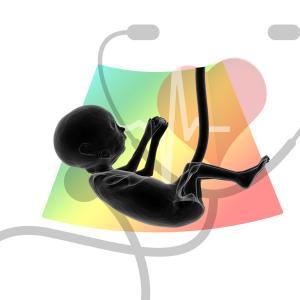 NIPT新型出生前診断とは?【検査は全部で5つ】費用/精度/時期