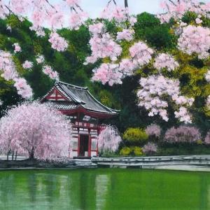 NOー183<箕面・勝尾寺山門前の枝垂れ桜