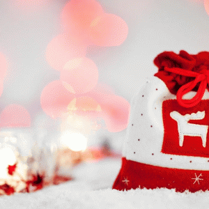 【知育・子育て】クリスマスの過ごし方とおすすめプレゼント