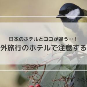 【旅行の準備】日本のホテルとの違い・海外旅行のホテルで注意する点