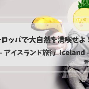大自然を満喫せよ!夏のアイスランド~準備編~