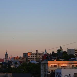 『函館元町ホテル 屋上から』 函館の街