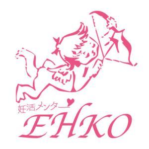 【高齢妊活】短期で成功『EHKOのセオリー』がグレードアップしました