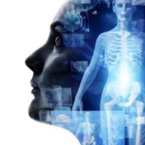 子宮内膜が若返る「再生医療の2つの問題点」