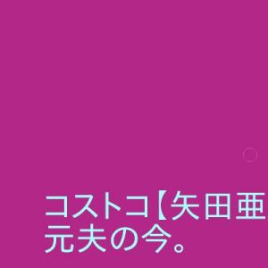 コストコ【矢田亜希子】再婚?元旦那押尾学は今何をしているのか。子供は何人