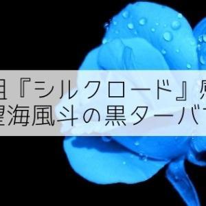 【観劇感想】望海風斗の黒ターバン最高『シルクロード~盗賊と宝石~』