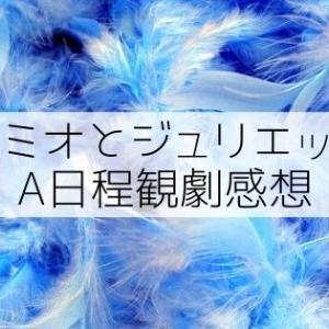 宝塚版『ロミオとジュリエット』初観劇感想【星組A日程】