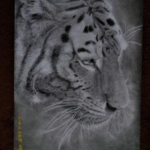 トラを描きました