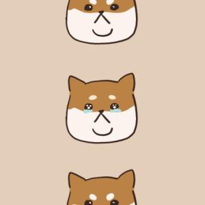 【お知らせ】北欧暮らしの一年&二重あごの柴犬