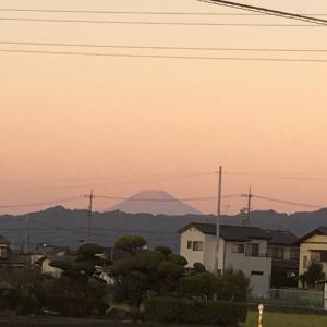 夕方の富士山と今夜の血圧とおっさんの独り晩飯