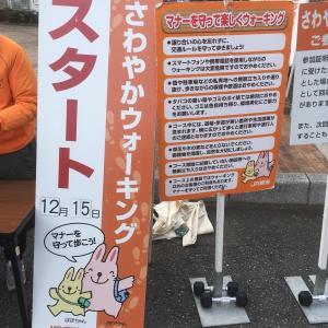 さわやかウォーキングvol.34 興津駅→薩埵峠→由比駅