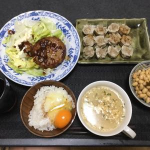 アベノマスクも来ないし定額給付金の案内も来ない静岡のおっさんの独り晩飯