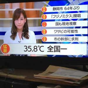 暑かったー!静岡 とおっさんの独り晩飯  カレーライス