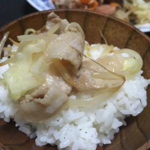 おっさんの独り晩飯 肉野菜炒めとズタズタな東海道本線