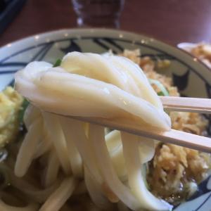【清水駅近く】丸亀製麺静岡清水店 かけうどん(冷)とかき揚げとおにぎり 600円
