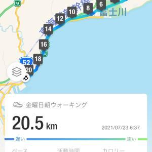 ウォーキング富士駅から興津駅20.5km