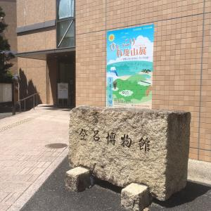 静岡市立登呂博物館  ひょっこり有度山展