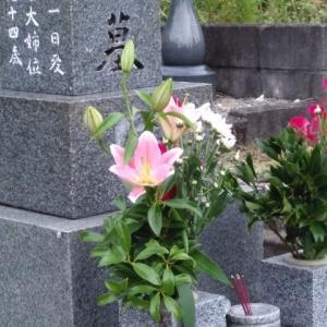 実家のお墓参り∼安芸しらす食堂で昼食∼中岡慎太郎記念館