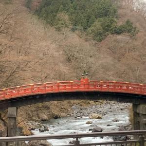 日光二荒山神社⛩   あらゆるご利益が揃う神社✩.*˚part 1