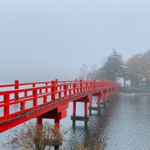 赤城神社⛩   女性の願い事を必ず叶えてくれる神社だそうですよ(〃▽〃)