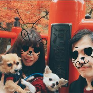 【群馬県伊香保】愛犬も楽しめる河鹿橋の紅葉!石段街がおいしい楽しい