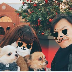 【愛犬とおでかけ】プラチナ通りから恵比寿ガーデンプレイスまでお散歩【恵比寿】