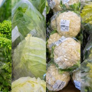 JAよこすか葉山の農産物直販所〈すかなごっそ〉は、ワクワクさせる旬の素材がいっぱい。