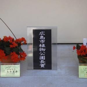 秋の洋ラン展 2(広島)