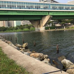 旧中川で初めてのハゼ釣り