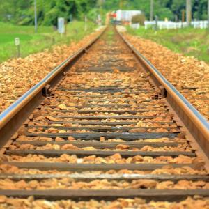 鉄道レールと向日葵たち🌻🚃