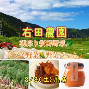 無農薬無化学肥料でつくるオーガニック野菜