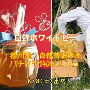 蜜蜂にやさしい養蜂家の蜂蜜🍯🐝