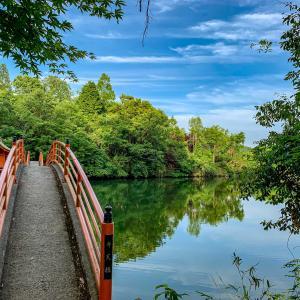 池に架かる「安志弁天宮」の真っ赤なアーチ橋🌉