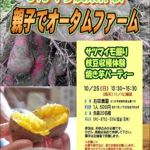今月25日は農業体験👨🌾収穫したら焼き芋も🍠