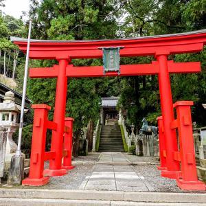 歴史ある神社を参拝⛩